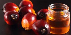 beneficios do azeite de dende