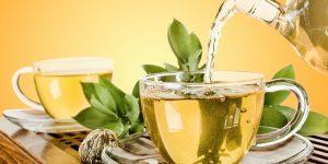 quais os benefícios do chá de louro?