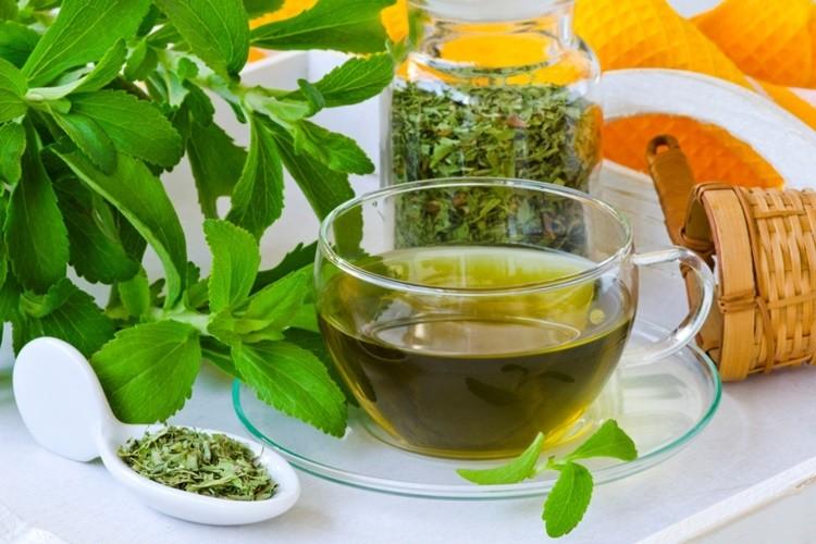 Os 15 Benefícios do Chá de Estévia Para Saúde