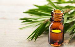 Os 20 Benefícios do Óleo da Árvore do Chá Para Saúde