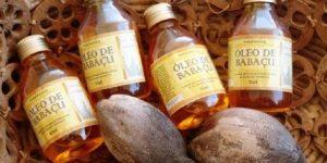 óleo de babaçu é saudável