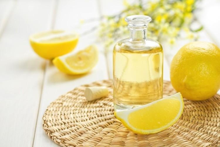 Os 15 Benefícios do Óleo de Bálsamo de Limão Para Saúde