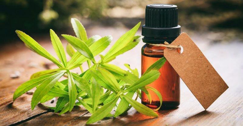beneficios do oleo de erva doce