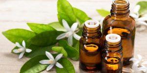 quais os benefícios do óleo de neroli?