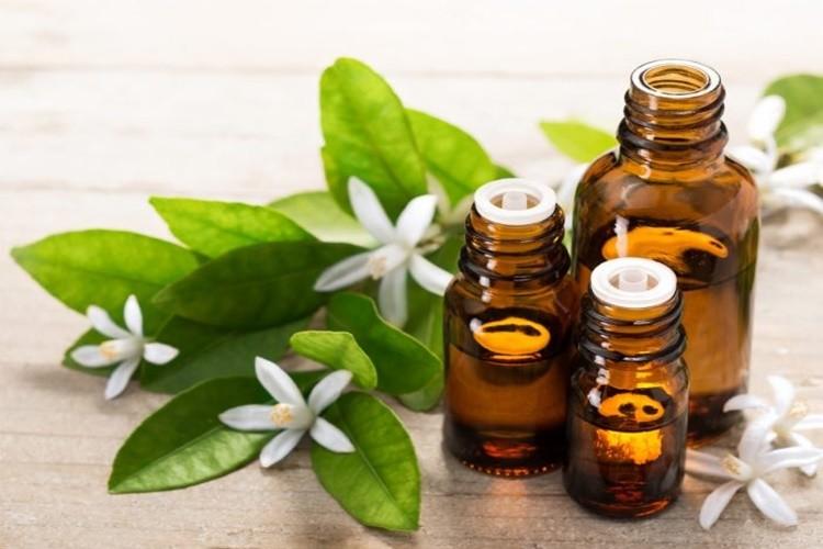 Os 15 Benefícios do Óleo de Neroli Para Saúde