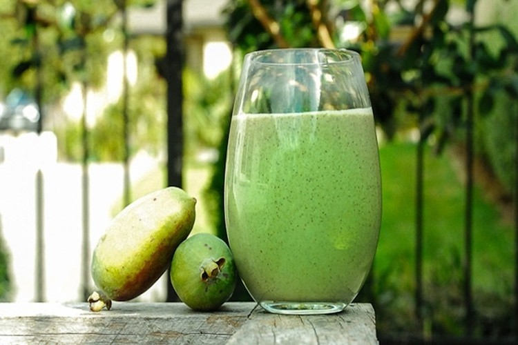 beneficios do suco de feijoa