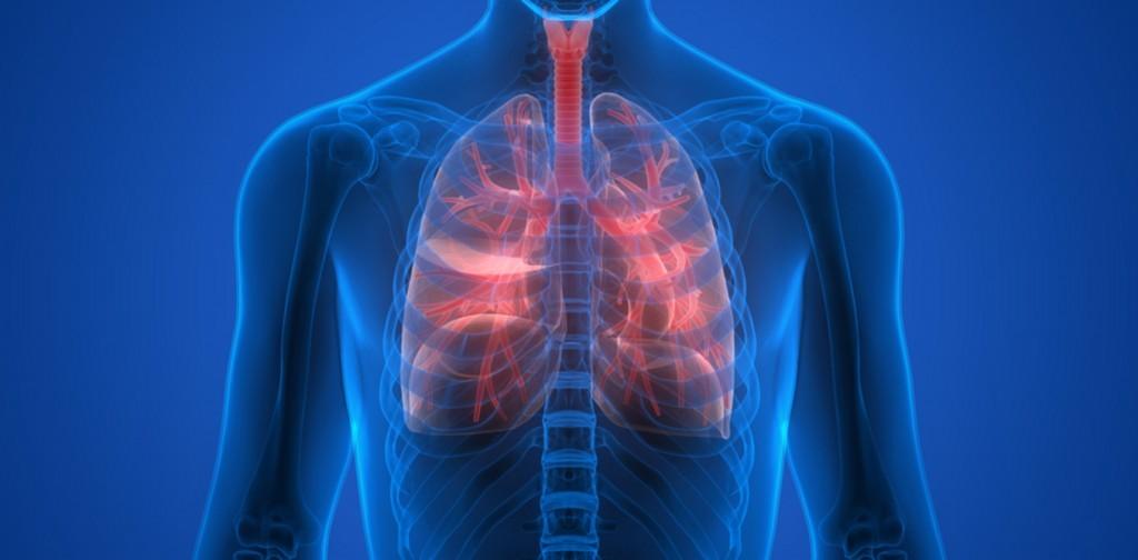 fibrose cistica o que e, causas, sintomas e tratamentos