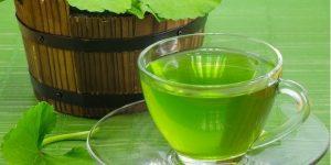 chá de centella asiática