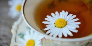 receitas de chá de camomila