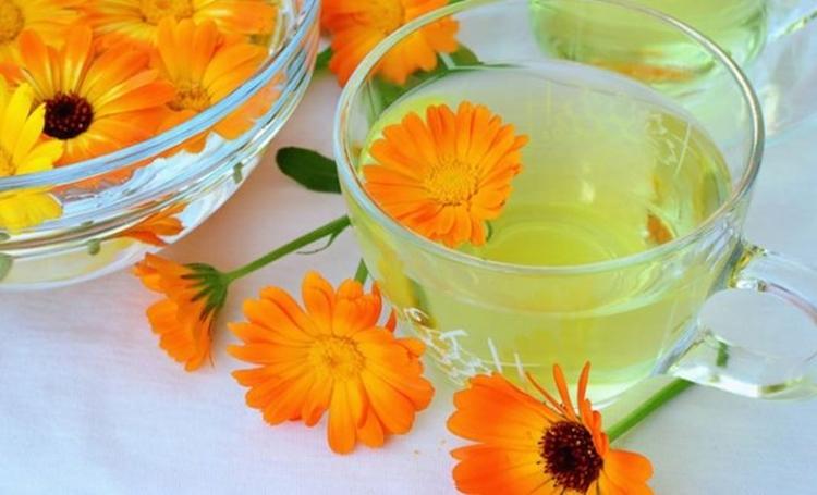 Os 30 Benefícios do Chá de Calêndula Para Saúde