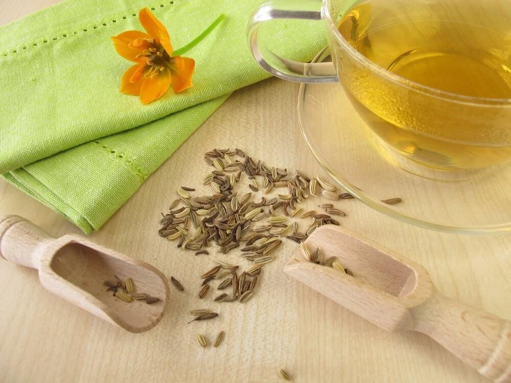 Chá de Erva-Doce regula o trânsito intestinal: veja 30 benefícios