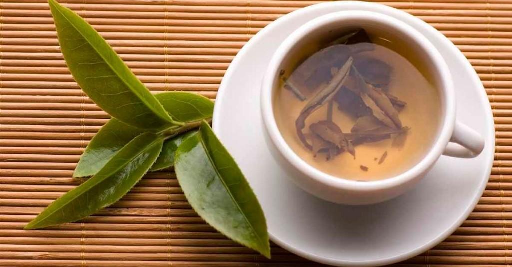 benefícios do chá de guaco