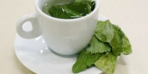 benefícios do chá de pata de vaca