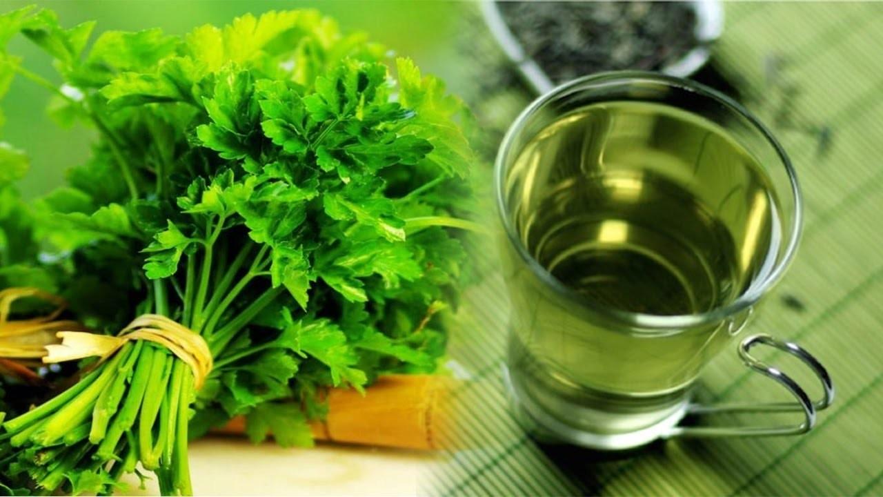 Chá de Salsa – O que é, Benefícios e Como Usar