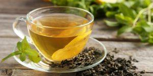 benefícios para você tomar chá tulsi regularmente