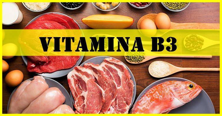 quais os benefícios da vitamina B3?