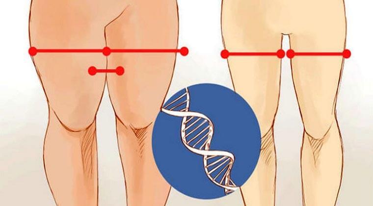 como emagrecer as pernas e coxas
