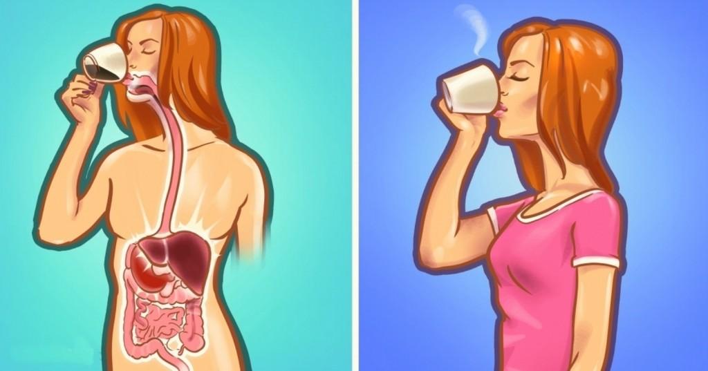 como melhorar a digestao de forma natural