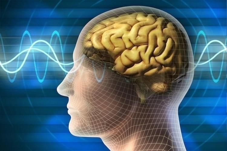 causas da epilepsia