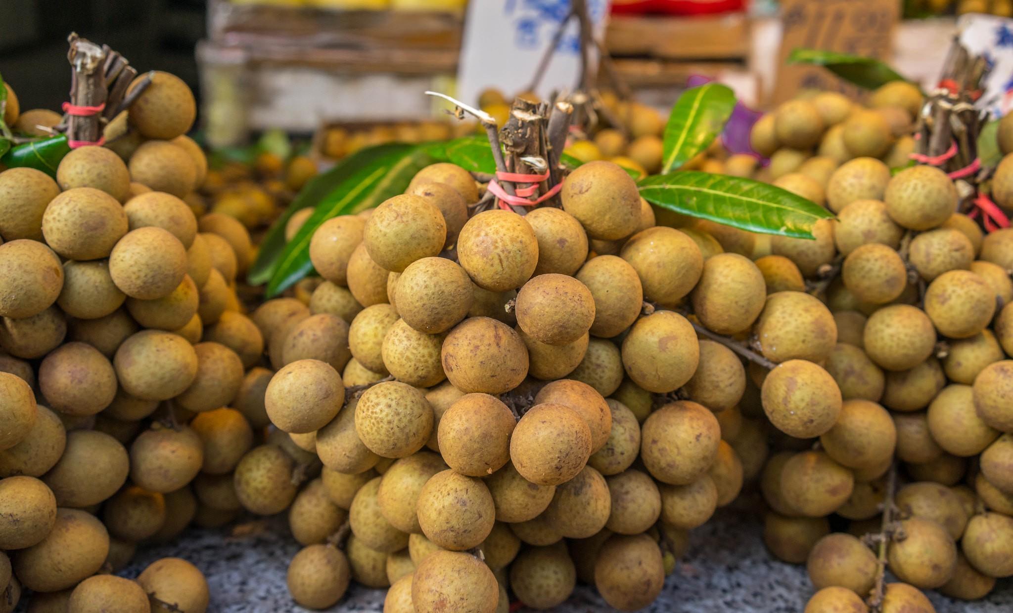 beneficio da fruta longan