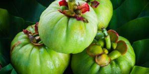 garcinia cambogia beneficio