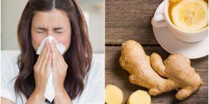 receitas de gengibre para combater o resfriado