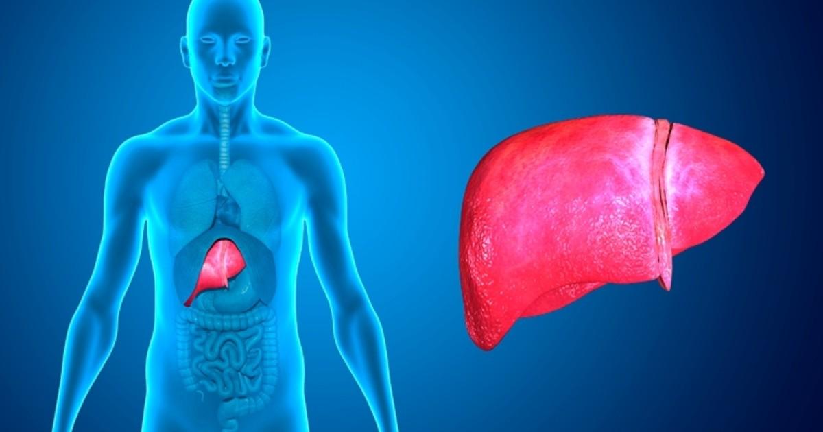 hepatite D o que e, causas, sintomas e tratamentos
