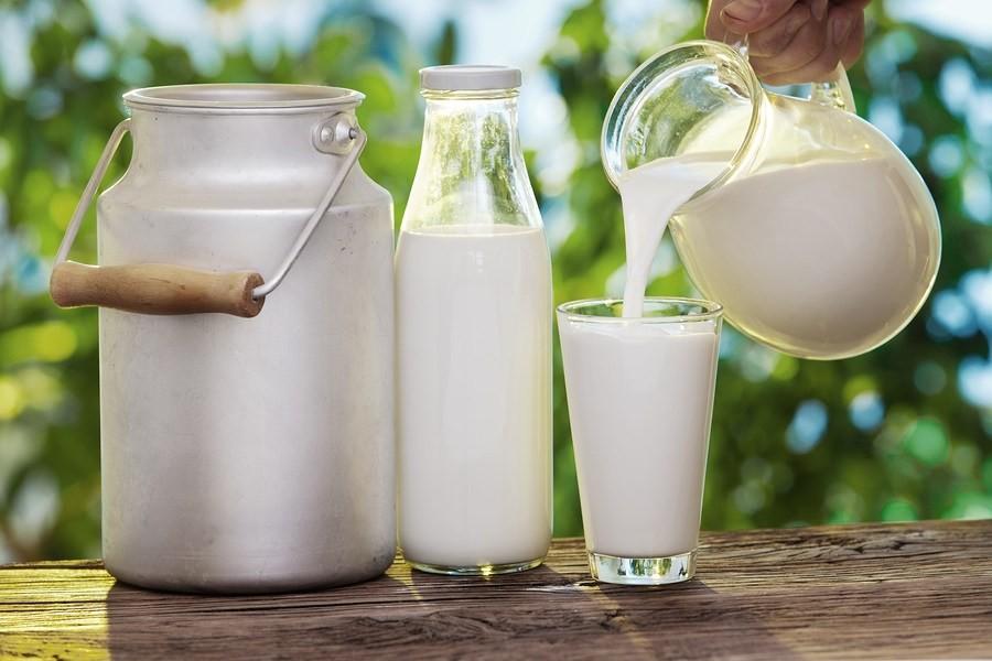 leite cru