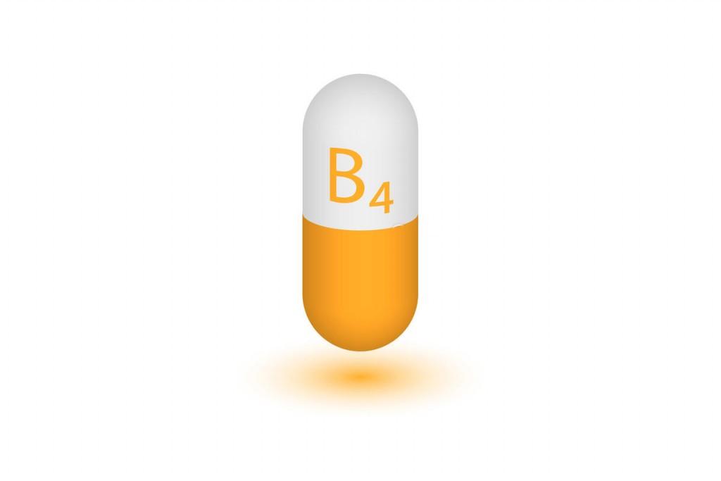 o que e a vitamina b4