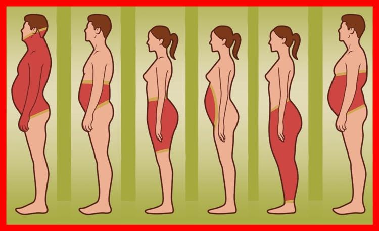 local da gordura em seu corpo