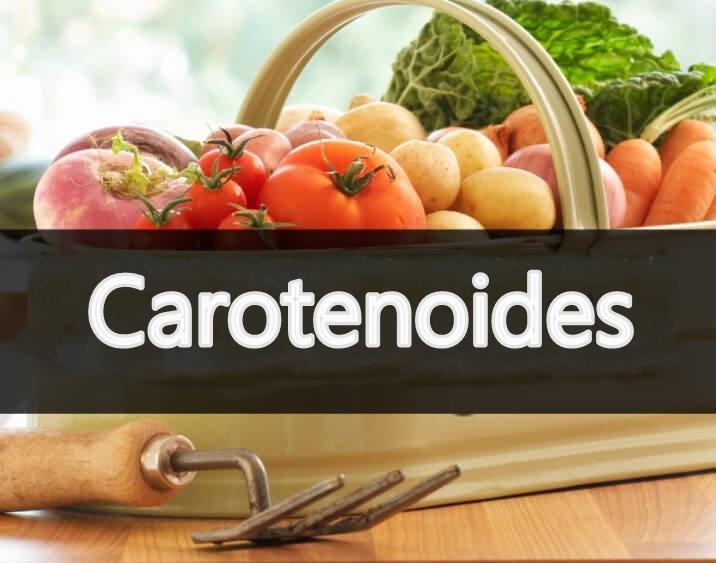 o que sao carotenoides