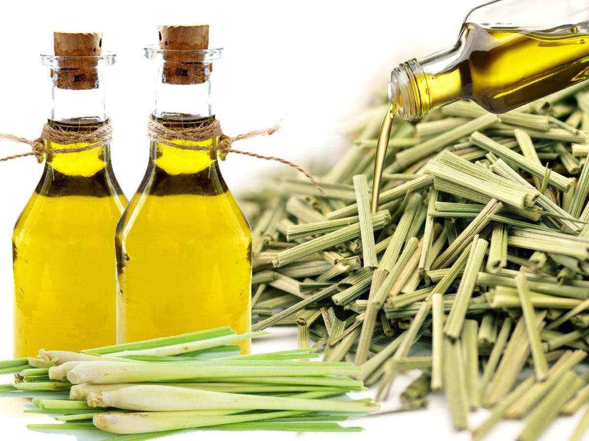 oleo de Lemongrass