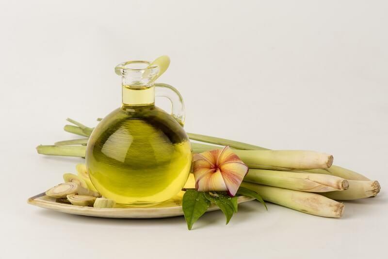 oleo de citronela beneficios