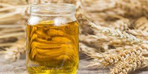 oleo de trigo