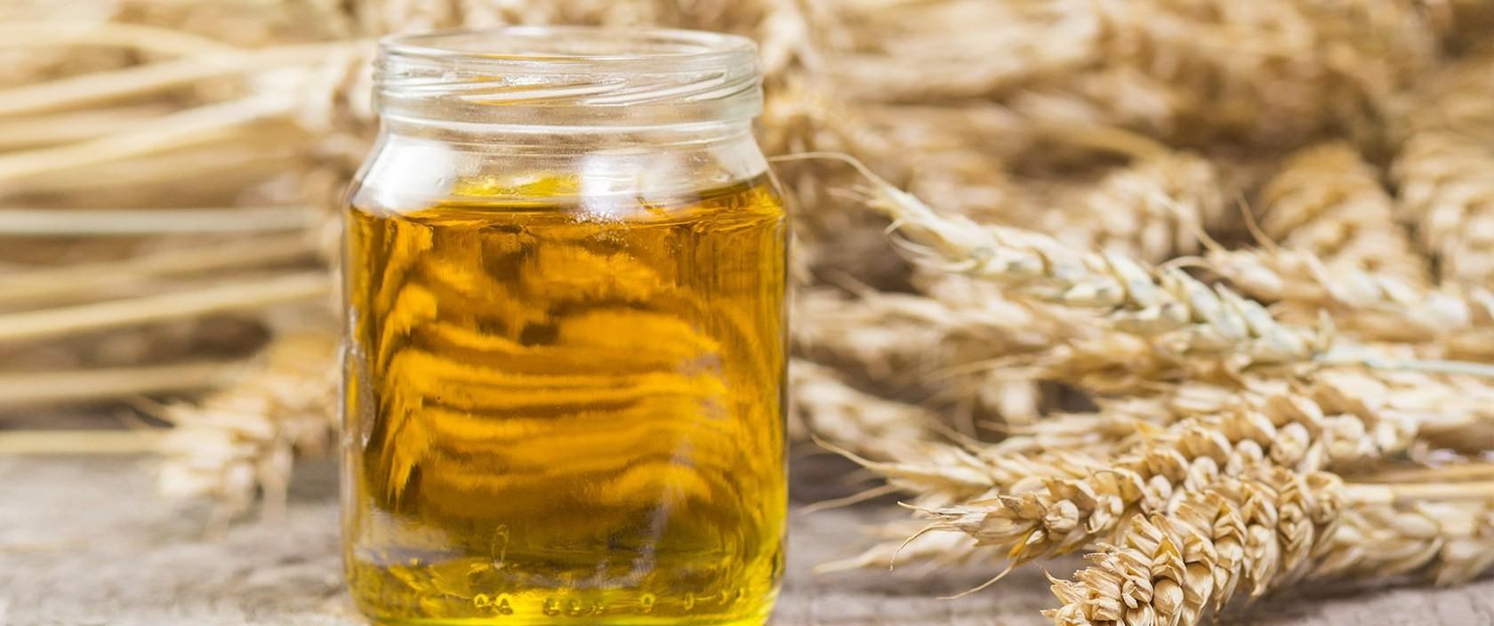 Óleo de Trigo – O que é, Benefícios e Como Usar