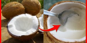 polpa do coco beneficios