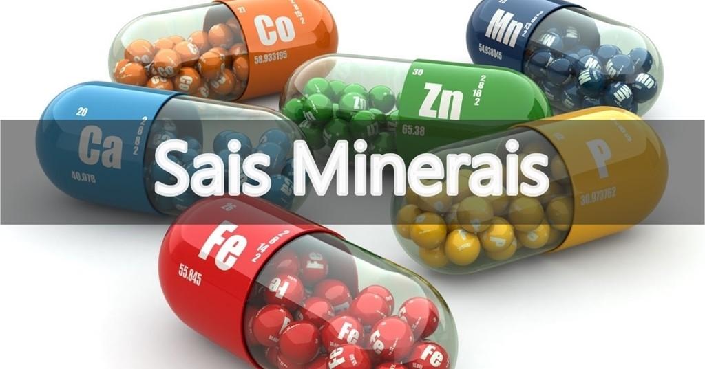 Sais Minerais – O que são, Fontes e Benefícios