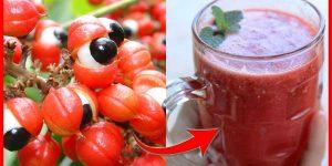 quais os benefícios do suco de guaraná?