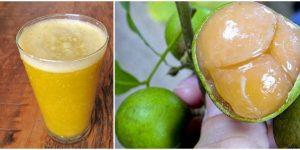 quais os benefícios do suco de mamoncillo?