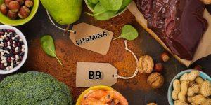 alimentos ricos em vitamina B9