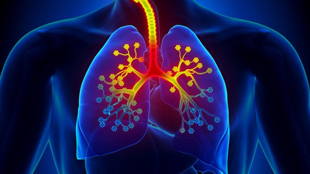 alergia respiratoria causas