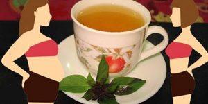 Chá de manjericão que elimina a retenção de líquido e gordura abdominal