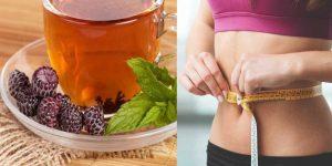 chá de amora para perder peso