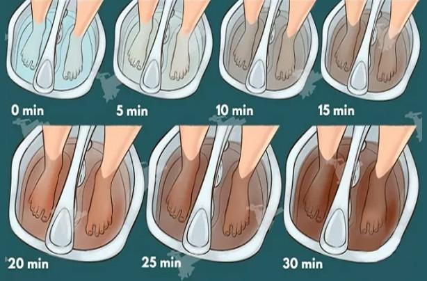 limpar o corpo de toxinas acumuladas