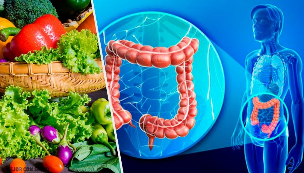 Como Aumentar as Bactérias Benéficas no Intestino de Forma Natural!