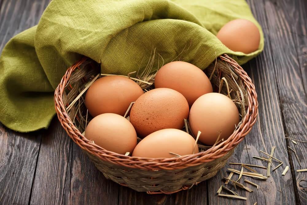ovos para gravidez