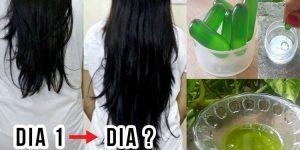 Remédios caseiros para fazer o cabelo crescer sem parar